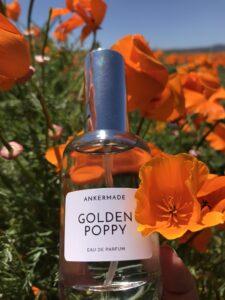 Golden Poppy Perfume Fragrance